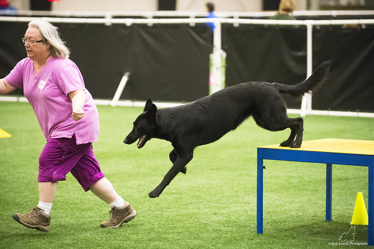 Melody Armstrong Southern New Jersey German Shepherd Dog Club